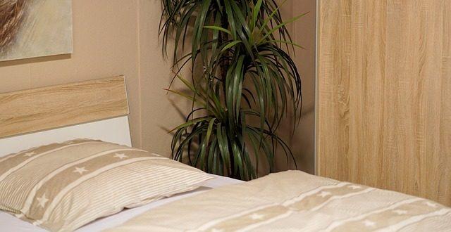 חדרים לפי שעה באזור תל אביב